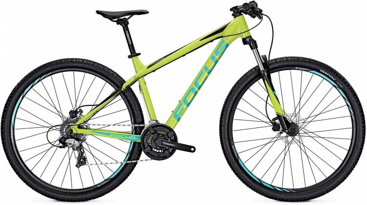 Focus Whistler Elite 29 lime green 2017