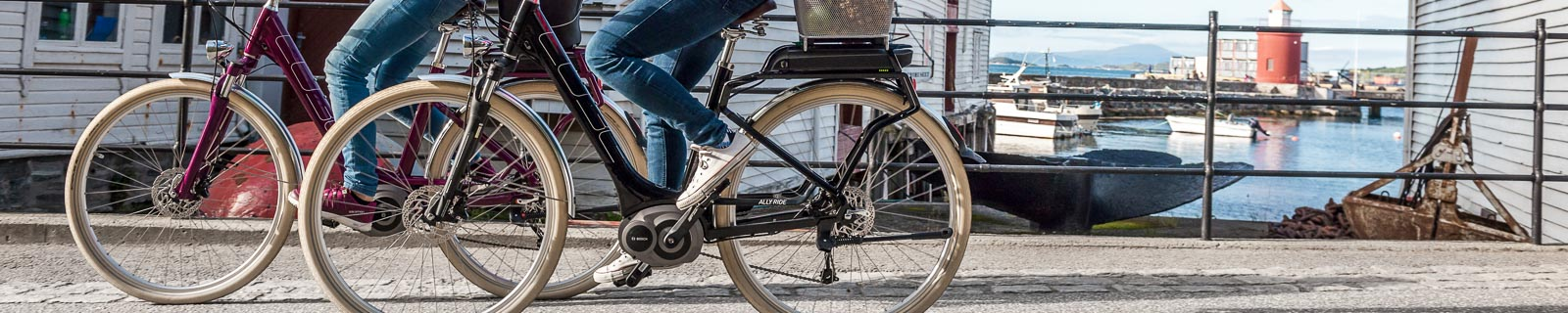 Low Entry Touring E-Bike