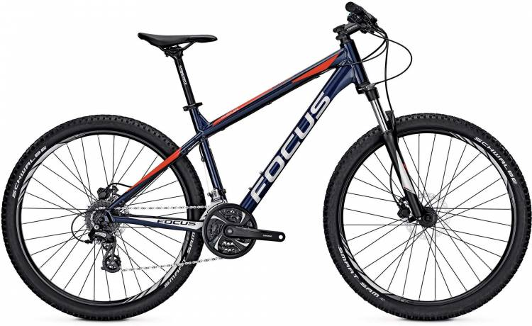 Focus Whistler Evo 27 royal blue 2017